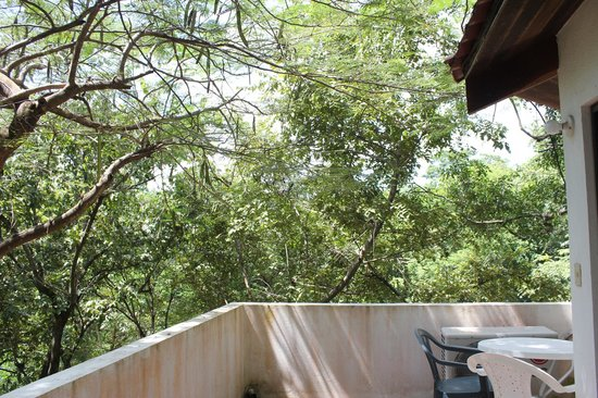 Hotel Las Tortugas: wake up to a beautiful balcony every morning