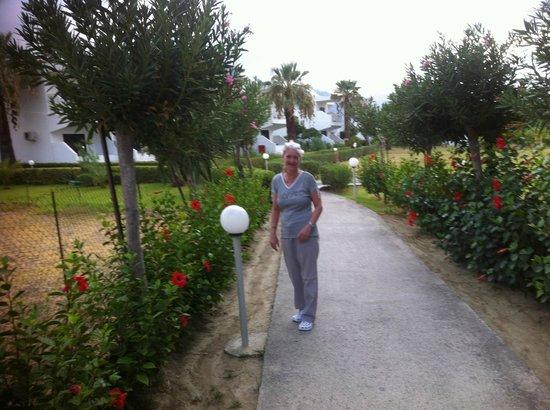 Hotel Kamari Beach: sehr gepflegtes Gelände
