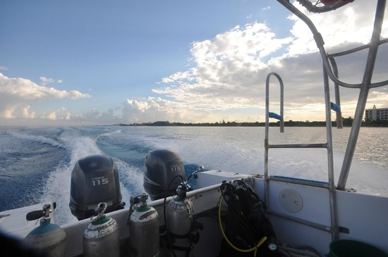 Aldora Divers : South bound for morning dive 1