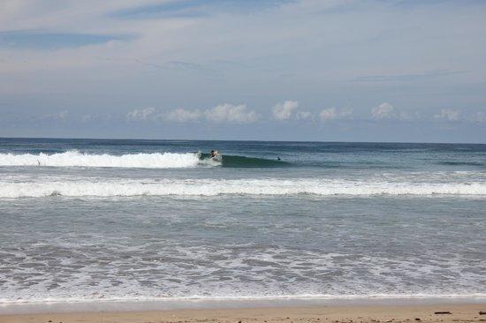 โรงแรม ลาตอร์ตูกัส: Playa Grande Surf