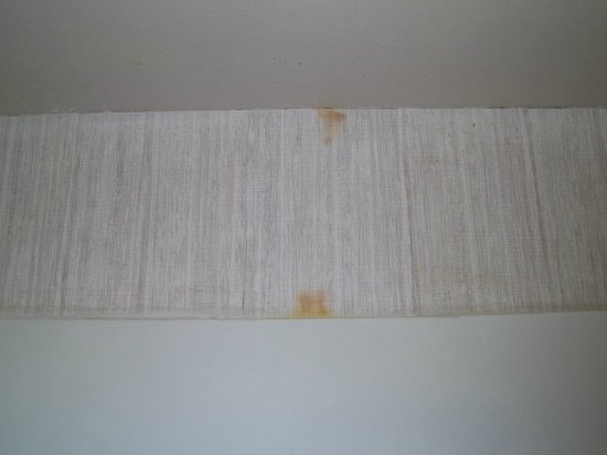 Red Carpet Inn & Suites South Plainfield/Piscataway: Wallpaper stained and falling