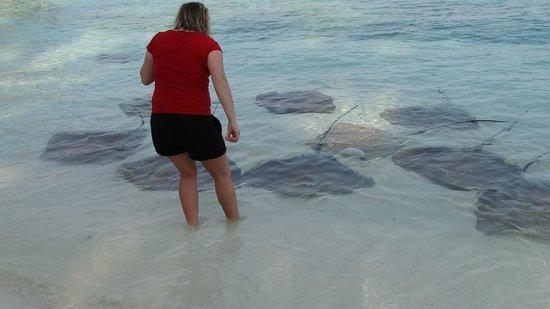 Vivanta by Taj Coral Reef Maldives: Rochen