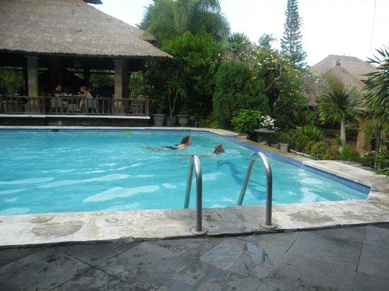Bali Agung Village: NICE POOL