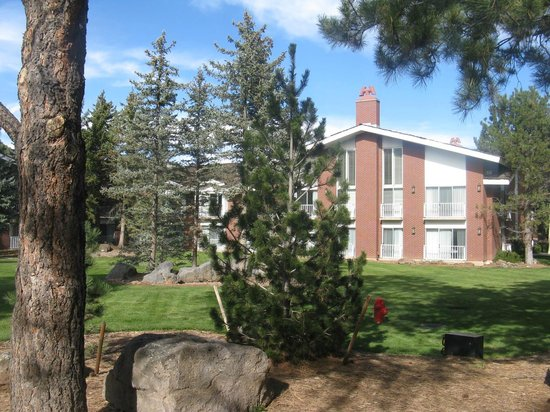 Little America Hotel Flagstaff: View from the woods/pool area