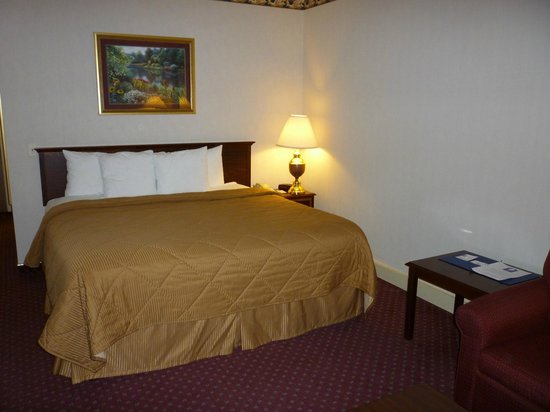 Baymont Inn & Suites Mundelein Libertyville Area : Comfy bed