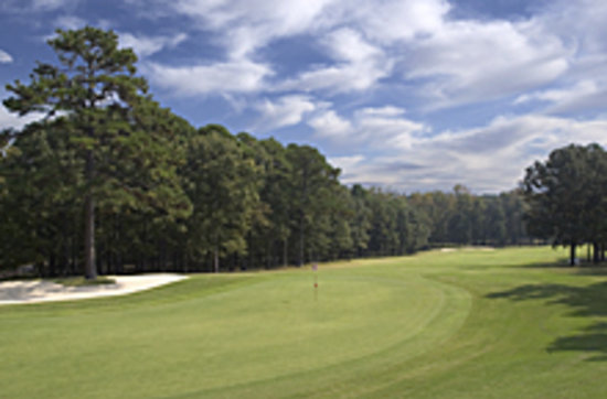 Red Apple Inn and Country Club: Fairway Shot