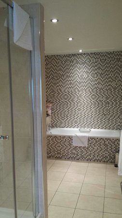 The Trout Hotel: Large shower and bath