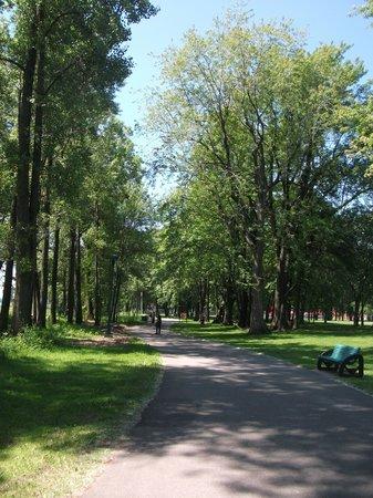 Parc Laviolette : Sentiers pédestres près du fleuve St-Laurent