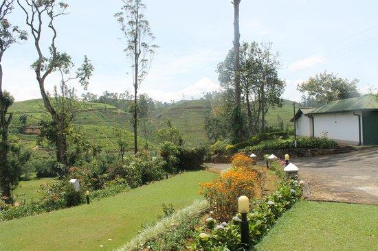 Mandira Bungalows: Park