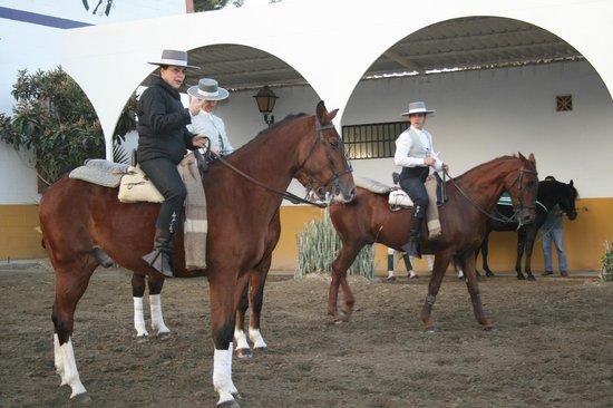 Centro de Equitación El Ranchito: in training