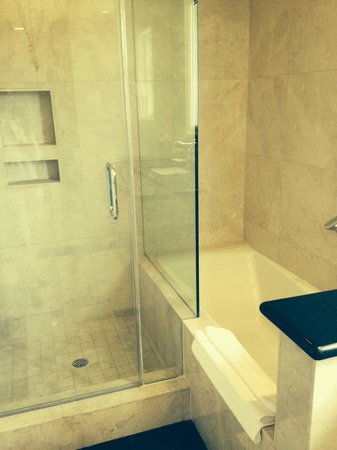 walk in shower and jacuzzi tub picture of la valencia
