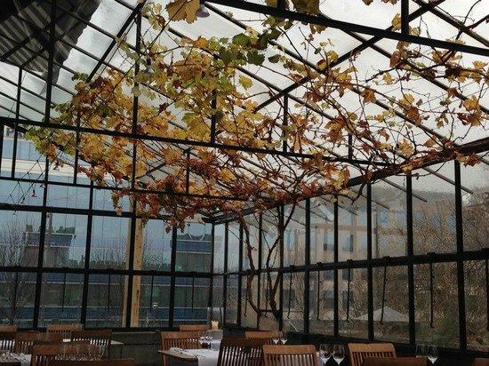 J 39 ai trouv ce restaurant tr s charmant le chef est un passionn la v randa est tr s sympathiq - Verriere externe ...