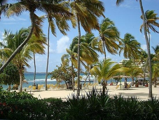 Bolongo Bay Beach Resort: resort beach - view from the room