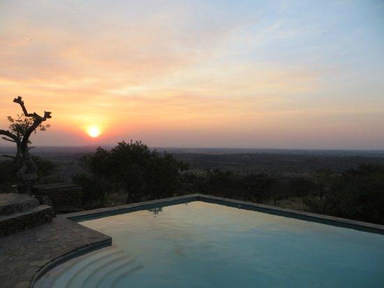 Serengeti Simba Lodge : View of the pool