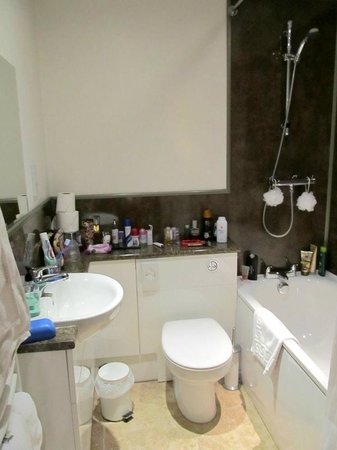 The Black Swan Inn: spotless clean bathroom-