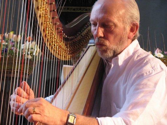 Luc Vanlaere Harpist: Luc Vanlaere in concert