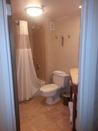 Hampton Inn State College : Shower Tub