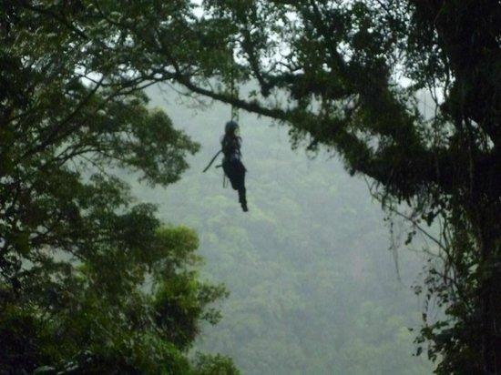 Monteverde Extremo Park : Tarzan swing
