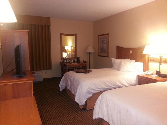 Hampton Inn State College: Twin