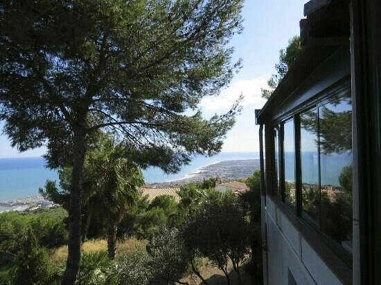 Restaurante El Pinar: the amazing view