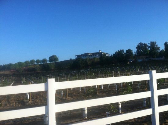 Que Syrah : View from street
