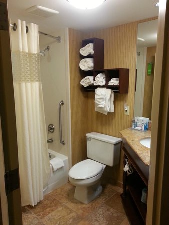 Hampton Inn Chambersburg: Bathroom
