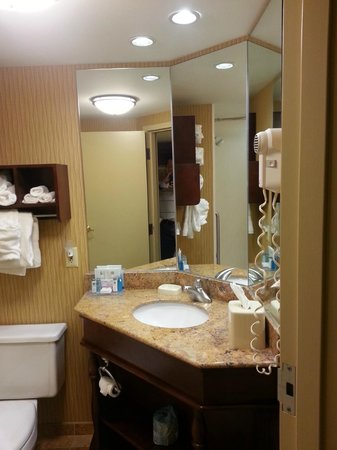Hampton Inn Chambersburg: Sink