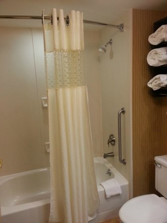 Hampton Inn Chambersburg: Shower