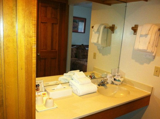 Grey Fox Inn & Resort : Sink outside the actual bathroom