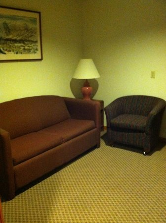 Grey Fox Inn & Resort : Sitting area/pull out sofa in the first room of room 5
