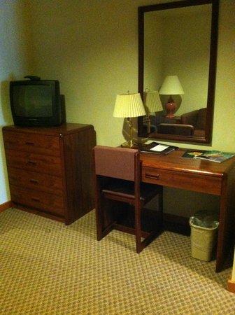 Grey Fox Inn & Resort : Desk, 2nd TV/bureau
