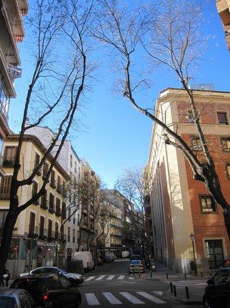 Clamores: Calle de Alburquerque a la altura del negocio.