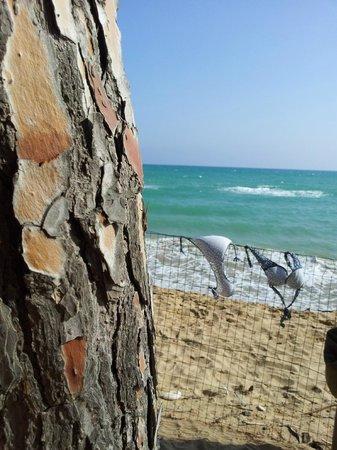 Eraclea Minoa: spiaggia