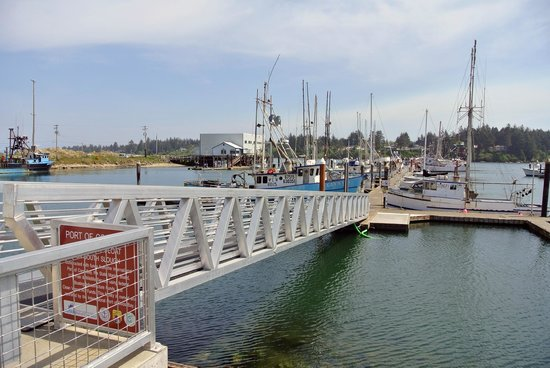 Charleston Marina's new dock