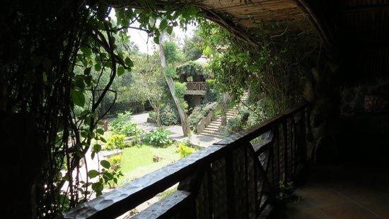 Kuriftu Resort & Spa Bahir Dar: Our balcony