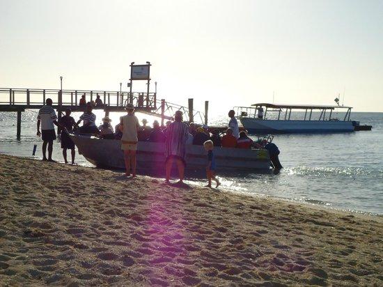 Plantation Island Resort: Front of beach