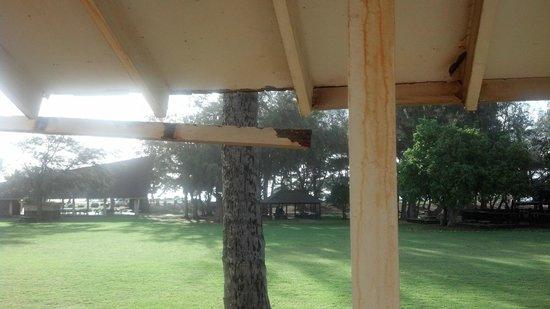 Aston Aloha Beach Hotel: Board falling on lanai, but you have a view