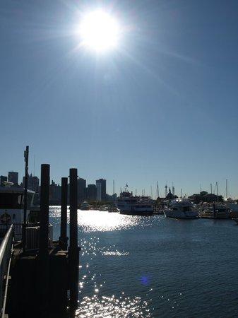 Liberty Harbor Marina & RV Park : View from the marina