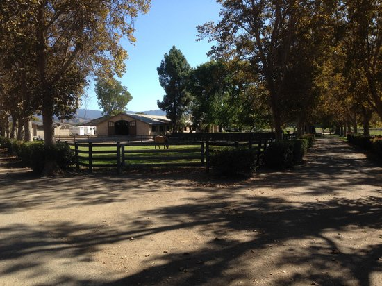 Stagecoach Wine Tours Santa Ynez: Bella Cavalli Ranch
