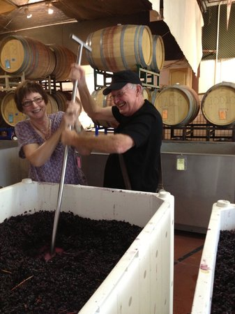 Wine Country Journeys LLC : Hands-on!