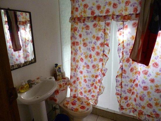 Ana Rapu Guest House: vista baño