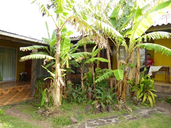 Ana Rapu Guest House: Entrada a habitacion