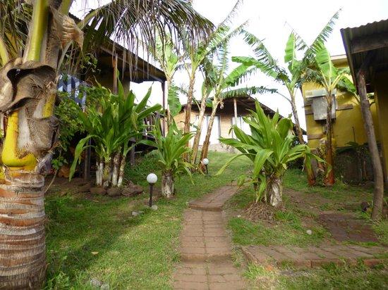 Ana Rapu Guest House: vista de salida habitacion