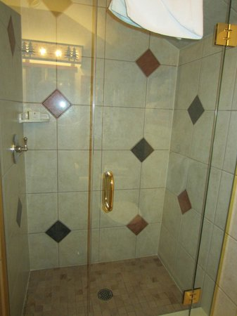 Alpine Village Cabin Resort - Jasper: Such a nice shower!