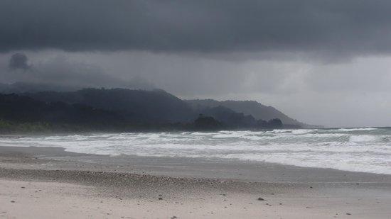 Hotel Casa Azul: The Beach