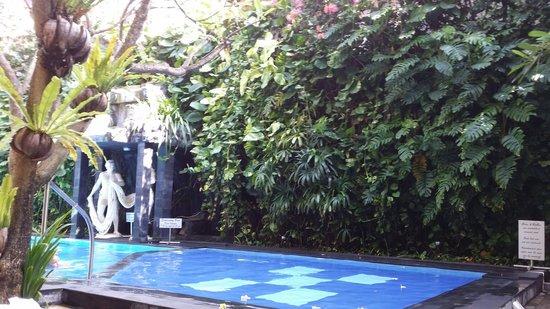 Green Garden Hotel: Nice pool
