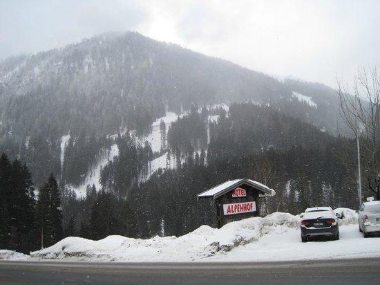 Alpenhof Hotel: Front