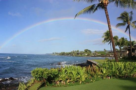 Kuhio Shores Condos : rainbow from Kuhio Shores front lawn