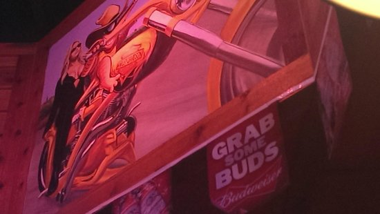 Texas Roadhouse : Armadillo decor