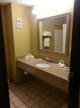 Best Western Plus Executive Inn: Sink